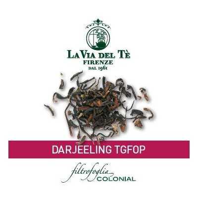 Darjeeling TGFOP 100 stuks