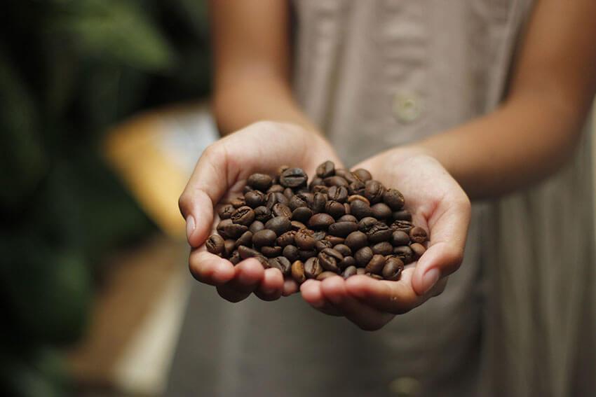 fairtrade koffie